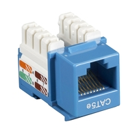 Black Box Network Services CAT5E Patch Cables Blue CAT5EPC-010-BL